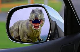 dinosaur in mirror